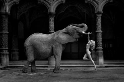 A work of Marc Lagrange